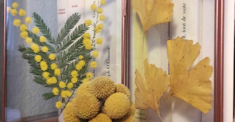 tutoriel diy fleurs séchées craspedia gingko biloba