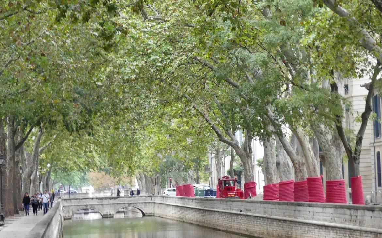 Nîmes gard romain arènes canal nimes
