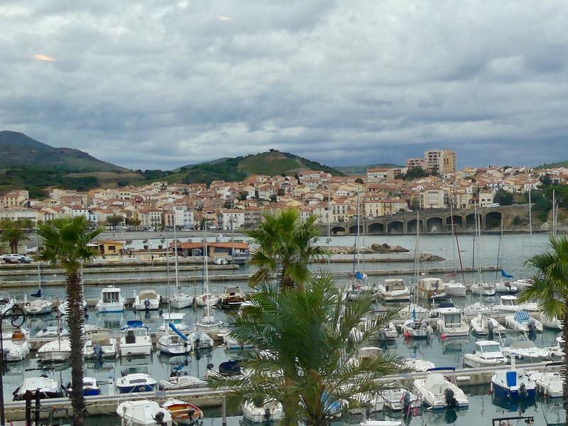biodiversarium banuyls sur mer occitanie