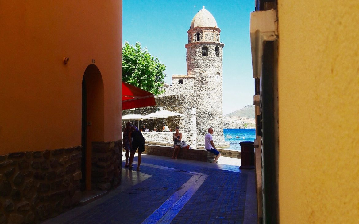 collioure chat pyrenees orientales
