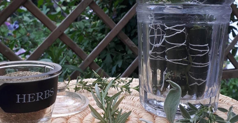 diy herbes aromatiques plantes