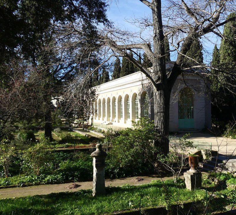 montpellier hérault tourisme jardin des plantes