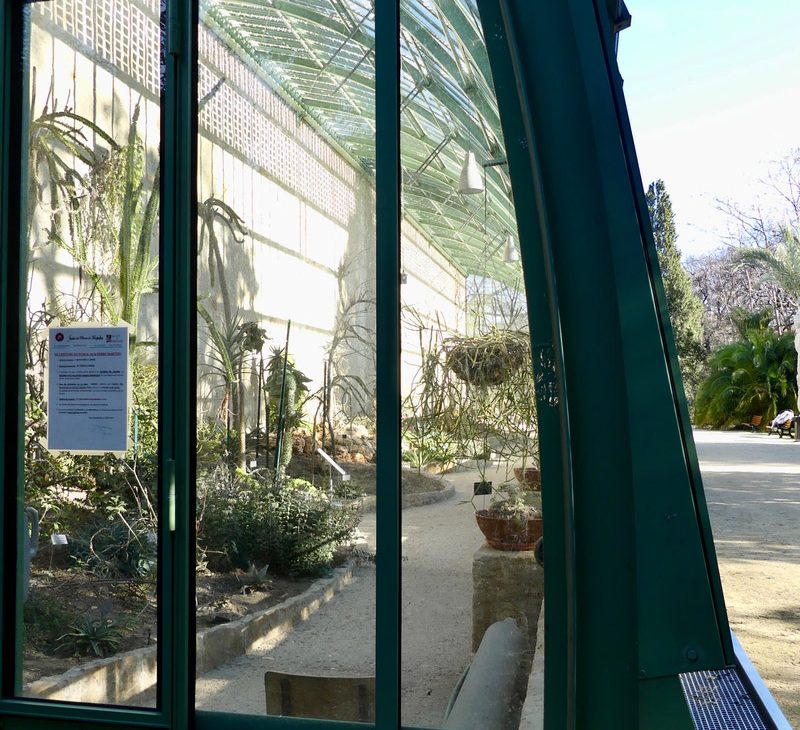 montpellier hérault tourisme jardin des plantes serre