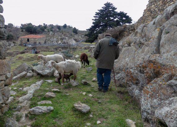 Village de Comes