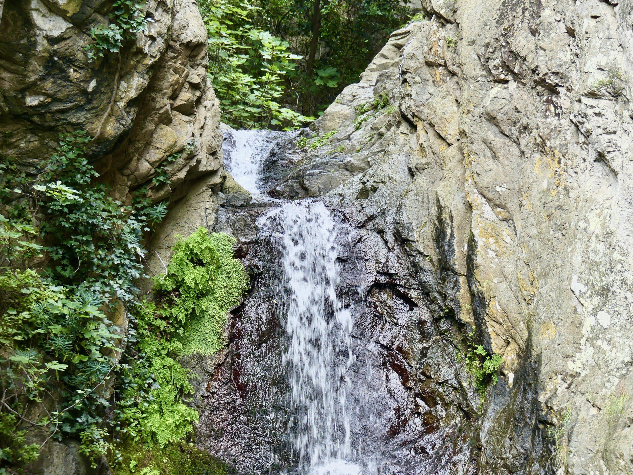 cascade ceret