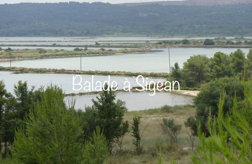 Sigean